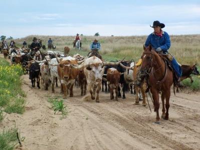 Kim's Country Line:  Snapshot Kansas:  Sandy Kansas